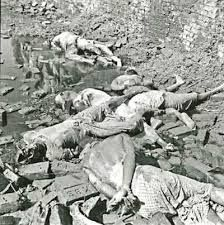 liberation war of bangladesh essays