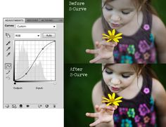 Photoshop Adjustment Layers: Curves Part 1 Polished Picture