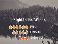 Night In the Woods - Orange Cedarwood Frank Cedarwood Essential Oil, Essential Oil Diffuser Blends, Doterra Essential Oils, Young Living Essential Oils, Diffuser Recipes, Wellness, Cleaning, Stamping Plates, Nail Stamping
