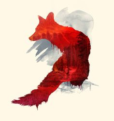 Red Fox, Amazing ~ See the Man Walking on the Forest Path, Gorgeous Artwork