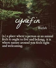 Cynfin: a place where a person or an animal feels it ought to live and belong, it is where nature around you feels right and welcoming.