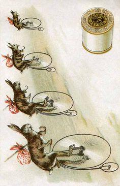 vintage-rabbit-advertisement @ Vintage Fangirl