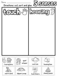 5 Senses Sort by Rock Paper Scissors Five Senses Preschool, 5 Senses Activities, Summer Preschool Activities, Toddler Learning Activities, Kids Learning, 1st Grade Worksheets, Kindergarten Worksheets, Calendar Worksheets, Teaching Language Arts