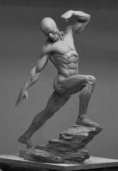 desenho+de+anatomia.jpg (662×960)