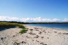 This trail has been said to be one of the most picturesque coastal day hikes in Eastern North America and for good reason. Adventure Tours, Day Hike, White Sand Beach, Nova Scotia, Playground, Seaside, North America, Coastal, Trail