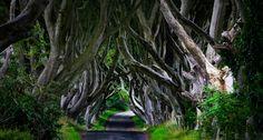 Bing Images - Northern Ireland