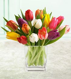 West Allis Florist - Order flowers online from your florist in West Allis WI. Locker's Florist offers fresh flowers and hand flower delivery right to your door in West Allis. Mothers Day Flowers, Flowers For You, Order Flowers, Tulips Flowers, Love Flowers, Daffodils, Fresh Flowers, Colorful Flowers, Spring Flowers