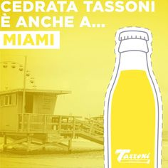 Traveling should not mean feeling homesick. You can sip a fresh citron even if you're on the beach in Miami! Italian Drinks, Sparkling Drinks, Non Alcoholic, Soda, Traveling, Packing, Italy, Fresh, Beach