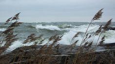 Voimakasta tuulta Porissa 31. lokakuuta 2015. Kuva: Matti Nurmi Copyright: MTV… Winter Storm, All Over The World, Finland, Coast, Ocean, Mountains, Beach, Places, Water