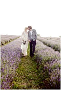 Lavender Field Wedding / Photo by Eddie Judd --his coat disgusts me. Everything else is gorgeous though
