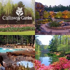 The Lodge and Spa at Callaway Gardens a Family Vacation in Pine