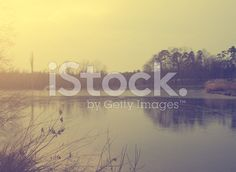 Landscape with lake royalty-free stock photo