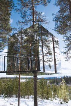Des cabanes dans une forêt en Suède