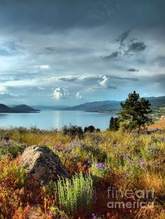 ✯ Okanagan Lake in the Spring - British Columbia. O Canada, Canada Travel, Cool Landscapes, Beautiful Landscapes, British Columbia, Rocky Mountains, Landscape Photos, Landscape Photography, Beautiful World