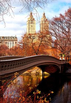 Bow Bridge, Fall in Central Park by midnightinparis | New York City Feelings | Bloglovin'