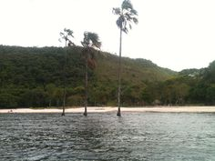 laguna de Canaima, Venezuela http://blog.zingarate.com/travelsalone