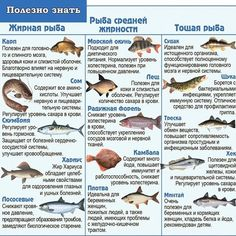 Fish Recipes, Healthy Recipes, Beef, Food, Minerals, Image, Tejidos, Fold Clothes, Fishing Rods