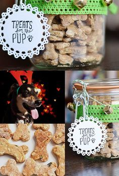 Treats for the Pup | 24 Delicious DIY Food Gifts In Jars