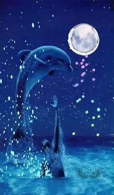 Beautiful Nature Pictures, Beautiful Nature Wallpaper, Beautiful Moon, Name Wallpaper, Trippy Wallpaper, Moon Poems, Lotus Flower Pictures, Dolphin Art, Amazing Gifs