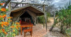 Luxury Camping Sites in Cape Town - The Inside Guide Camping In Pa, Camping Life, Outdoor Camping, New York State Parks, California Beach Camping, Southern California, Red River Gorge, Yellowstone Camping, Best Places To Camp