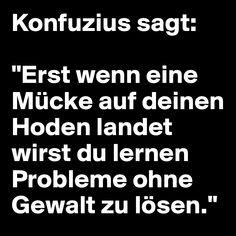 """Konfuzius sagt:  """"Erst wenn eine Mücke auf deinen Hoden landet wirst du lernen Probleme ohne Gewalt zu lösen."""""""