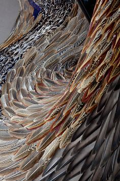 Closeup of the feathers used in the larger installation piece. Art & Lair: Artist and Feather - Kate MccGwire