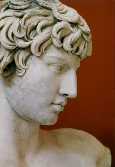 Profile of a statue of Antinous, lover of the Roman emperor Hadrian I can't believe how much this looks like Charlie!