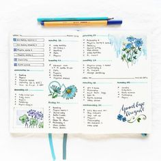 Super Pretty Bullet Journal Weekly layouts. Great ideas for lovely bujo layouts. This one looks smoothly, magically calm. Like Martha Stewart had a baby with Chriss--Never mind. Lets just say it looks preternaturally calming. #bulletjournal #bujo #bulletjournaling #journaling
