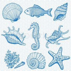 Vector of 'Sea collection Original hand drawn illustration'