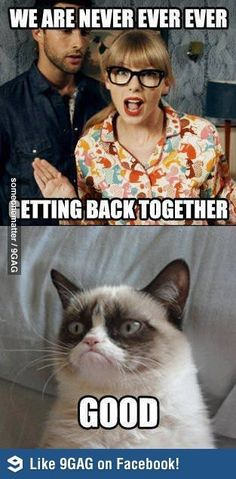 Grumpy Cat Strikes Again! - Likes