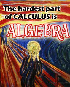 NobbeNotes - AP Calculus