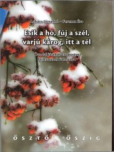 241332476 Esik a Ho Fuj a Szel Teli Otlettar Stories For Kids, Creative Writing, Album, Education, Winter, Therapy, Winter Time, Stories For Children, Narrative Poetry