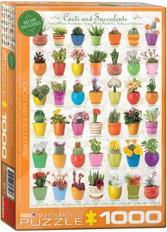 Cactus & Succulents Puzzle at Eurographics
