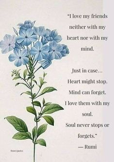 ~Rumi  The soul never stops...