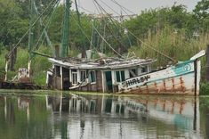 Terrebonne Parish Louisiana - search in pictures Louisiana Swamp, Louisiana Art, Snake Farm, Terrebonne Parish, Great Places, Places To Go, Cajun French, Bayou Country, Old Sailing Ships