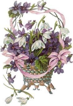 gifs fleurs - Page 2 Vintage Cards, Vintage Paper, Vintage Postcards, Vintage Images, Clipart Vintage, Art Floral, Deco Floral, Victorian Flowers, Vintage Flowers