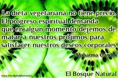 http://elbosquenatural.blogspot.com.es