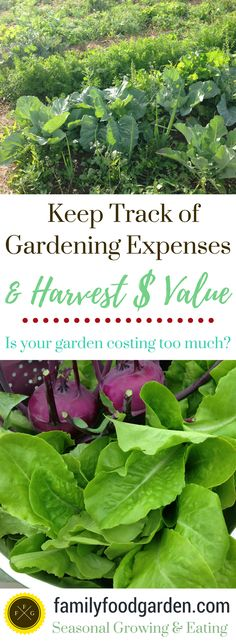 Keeping track of gardening expenses + harvests