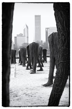 Agora is the name of a group of 106 headless and armless iron sculptures at the south end of Grant Park in Chicago. Designed by Polish artist Magdalena Abakanowicz