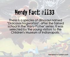 Nerdy Fact #1133  Dragon Dinosaur