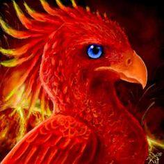 Realistic Tattoo Idea Phoenix Love the blue eye