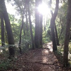 """""""We are strongest when we humble ourselves to ask for help.""""  Team member, Paula Kiger, shares a tale of getting lost and how those """"truths from the trail"""" apply to business and life."""