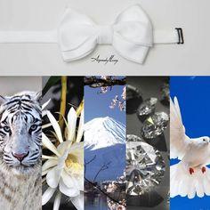 Pajarita Classic por ARQUIMEDES LLORENS Color: BLANCO #pajarita #bowtie #bowties #pajaritas #corbatin #gala #etiqueta #smoking #elegante #inspiración