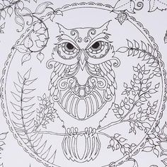 Jual Lalang Secret Garden Magic Forest Coloring Book Black And White
