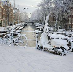 Fresh snow fallen in the center of Amsterdam