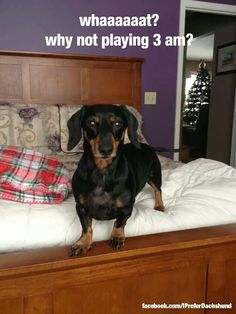 What? No playing at 3am!?