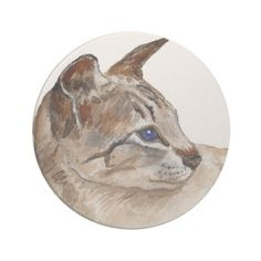 tabby point siamese cat coaster