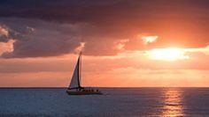 things in barbados Sail Caribbean, Island Villa, Luxury Villa Rentals, Beautiful Islands, Barbados, Far Away, Vacation Trips, Adventure Travel, Airplane View