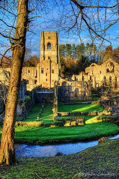 Through the trees at Fountains Abbey near Ripon, North Yorkshire, England