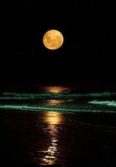 Red tide and full moon.